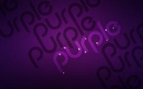 Обои пурпурный, color, цвет, Фиолетовый