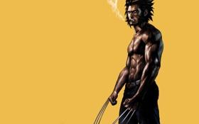 Обои сигара, Росомаха, Логан, люди икс, Wolverine, Marvel, x-men