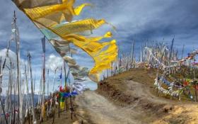 Обои Bhutan, Prayer flags, Chele La Pass
