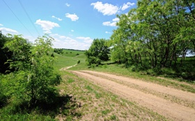 Обои дорога, лето, небо, деревья, поля, просёлочная