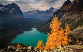 Обои лес, горы, скалы, озеро