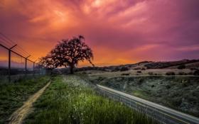 Картинка дорога, пейзаж, закат, забор, HDR