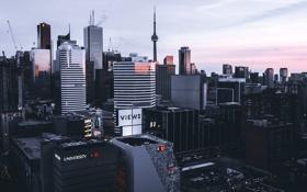 Обои Toronto, Street, Sunset, Canada, Urban, City, Cityscape