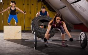 Обои group, workout, crossfit