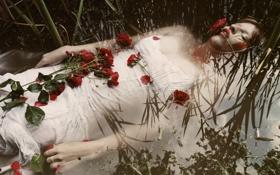 Обои вода, девушка, цветы, отражение, кровь, Where the Wild Roses Grow