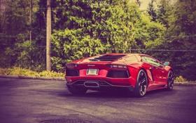 Обои Lamborghini, Ламборджини, Red, LP700-4, Aventador, Авентадор, Supercar