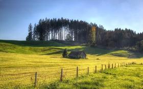 Обои поле, лето, дом, забор