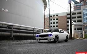 Обои Dodge, Challenger, tuning, vossen, VVSCV3