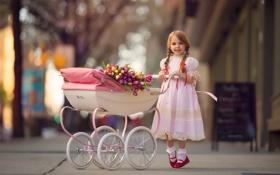 Обои цветы, девочка, коляска