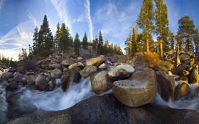 Картинка лес, река, камни, Природа