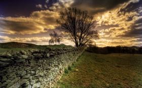 Картинка природа, пейзаж, небо, забор