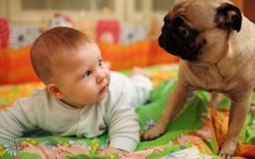 Картинка дети, ребенок, собака, юмор, dog, смешно, funny