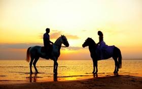 Обои море, девушка, закат, побережье, лошади, парень