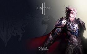 Картинка человек, воин, lineage 2, парень, рыцарь, линейка, human
