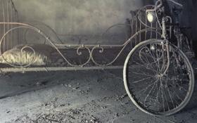 Картинка велосипед, фон, кровать