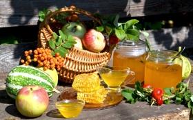 Обои лето, яблоки, соты, мед, шиповник, тыква, фрукты