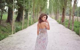 Картинка дорога, аллея, уход, рыжеволосая красавица