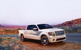 Обои Ford, Пустыня, Пикап, F-150