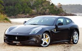 Картинка пляж, деревья, фон, чёрный, Феррари, Ferrari, суперкар