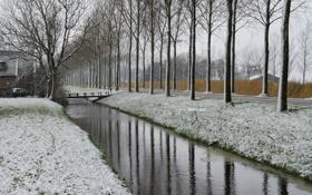 Картинка дорога, снег, деревья