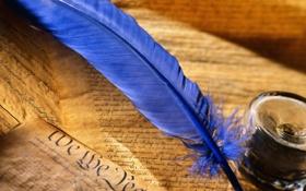 Обои фон, перо, обои, настроения, чернила, рукопись, надпись. бумага