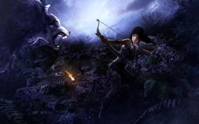 Картинка лес, волк, лук, Tomb Raider, стрелы, Lara Croft