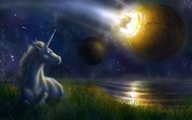 Обои море, небо, трава, звезды, планеты, единорог