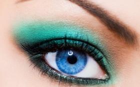 Обои взгляд, девушка, макро, глаз, макияж, брови, тени