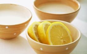 Обои лимон, посуда, цитрус, lemon, fruit, нарезанный