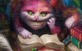 Картинка кот, книги, арт, очки, записи, ученый