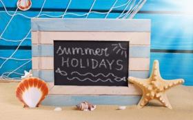 Обои песок, пляж, лето, отдых, ракушки, summer, beach