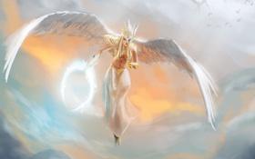 Картинка Dota 2, небо, птицы, ангел, арт, крылья, Vengeful Spirit