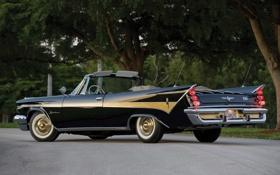 Обои деревья, фонари, классика, вид сзади, красивая машина, Convertible, 1959