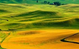 Обои осень, трава, холмы, поля, Италия