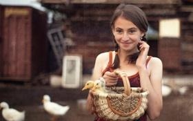 Обои настроение, утки, девочка