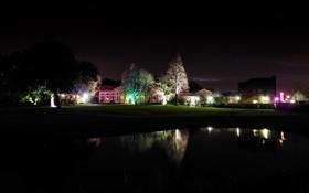 Картинка деревья, ночь, огни, озеро, дом, подсветка
