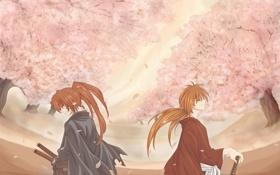 Обои лепестки, сакура, самурай, цветение, rurouni kenshin, кеншин, хитокири баттосай