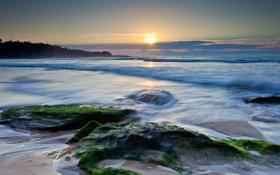 Картинка море, пейзаж, закат, камни