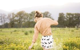 Обои поле, трава, девушка, цветы, шорты, лошади, рубашка