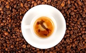 Картинка пена, кофе, зерна, Италия, чашка, блюдце, эспрессо
