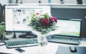 Обои цветы, стол, подарок, букет