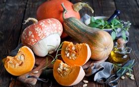 Обои осень, листья, масло, тыквы, овощи, ножницы, бутылочка
