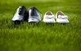 Картинка трава, ботинки, туфли