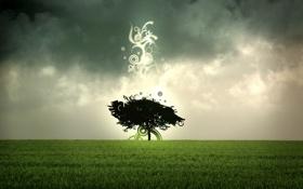 Обои поле, абстрактные формы, абстрактное дерево, темные облака, abstract tree, зеленая трава, одинокое дерево