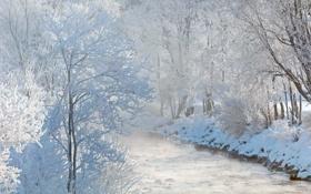 Обои зима, снег, река, Австрия, деревь, Зальцах