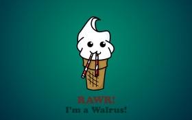 Обои надпись, морж, клыки, Мороженное, стаканчик, вафля, walrus