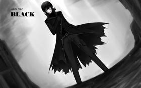Картинка улыбка, маска, darker than black, Lee Shen Shun