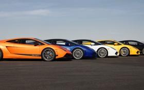 Картинка трек, красотки, суперкары, Lamborghini Gallardo