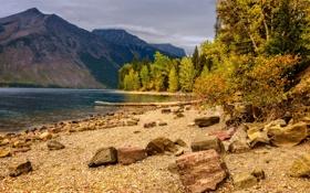 Картинка осень, деревья, горы, озеро, камни, берег, Glacier National Park