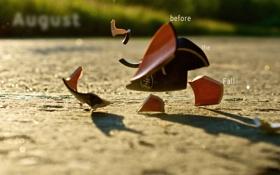 Картинка осколки, падение, чашка, август, игра слов, before the fall